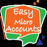 bfin company-easy micro accounts