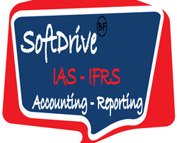 bfin company-softdrivce accounting and reporting