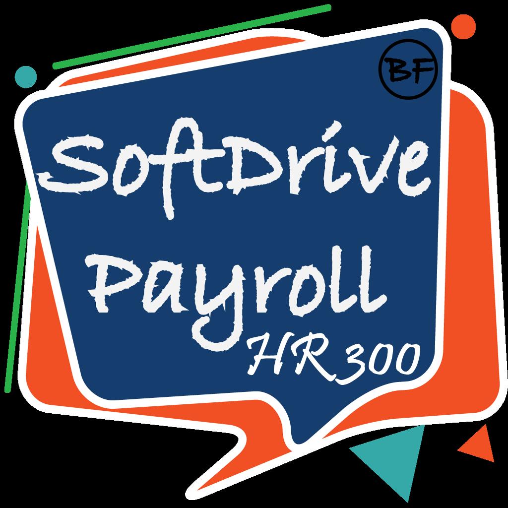 bfin company-softdrive payroll hr 300